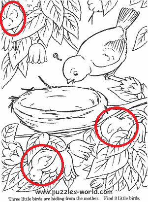 answer to Find 3 little birds puzzle