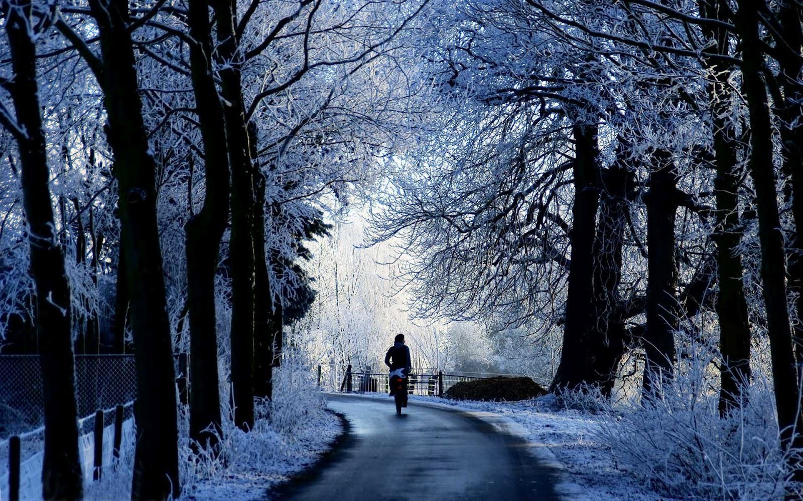s1600 winter achtergronden winter - photo #22