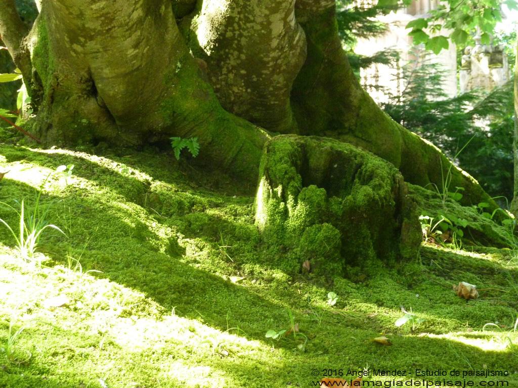 Jardines del capricho de gaud comillas cantabria for Jardines el capricho