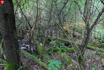 Остатки польской пограничной стражницы 'Луговатое'. Свалка мусора