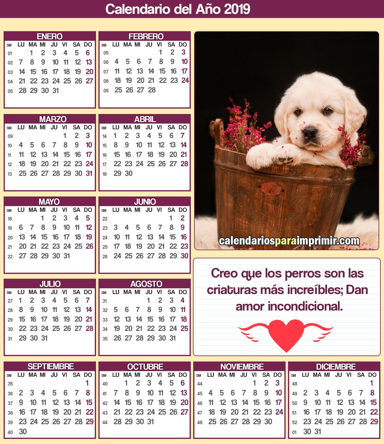 calendario 2019 para imprimir perros