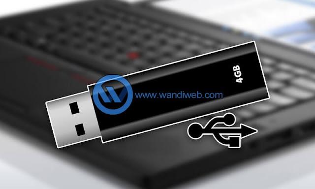 Tips Cara Memilih USB Flash Disk yang Tepat - WandiWeb