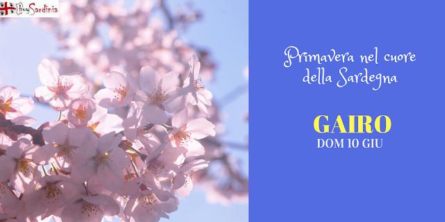 Primavera nel cuore della Sardegna a Gairo con buySardinia