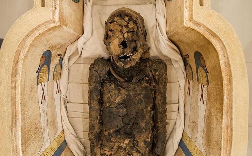 Múmia original Tothemea do Museu Egípcio e Rosa Cruz em Curitiba. Foto: Leticia Akemi, Gazeta do Povo