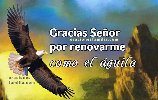 oracion de accion de gracias por renovacion como aguila, oraciones de la mañana por Mery Bracho