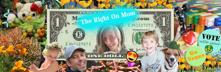 Vegan Mom Blog TheRightOnMom.com