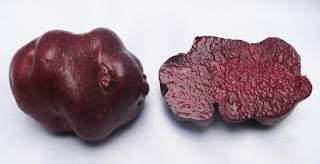 Sangre de Toro, papas peruanas, 3000 variedades de papa