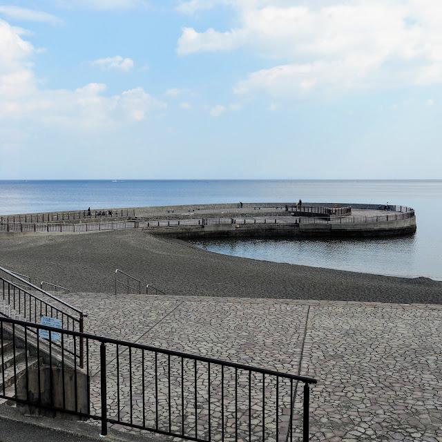 川奈 いるか浜