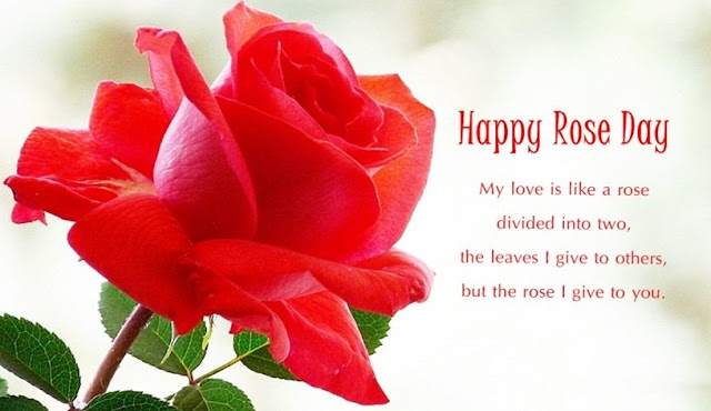 happy-rose-day-2017-images-with-amazing-love-messages-for-girlfriend