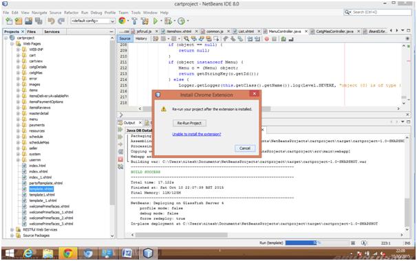 Software Development in JSF: Debug Netbean Projects