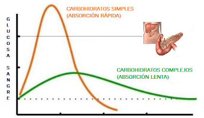 Pico insulina Pancreas