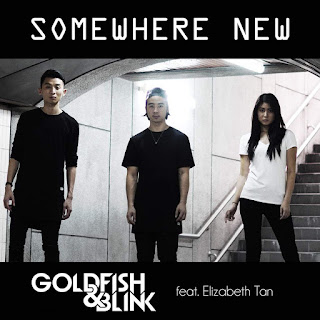 Goldfish & Blink - Somewhere New (feat. Elizabeth Tan) on iTunes