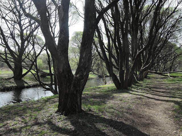 измайловский парк красный ручей