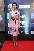 Actress Pranitha Subhash Pos in Short Dress at SIIMA Short Film Awards 2017 .COM 0036.JPG
