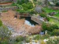 Donji pisk ili Stara voda, Ložišća, otok Brač slike