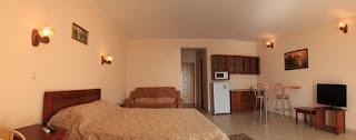 """Апартамент-студио с мини-кухней 1-комнатный отеля """"da Vasko"""""""