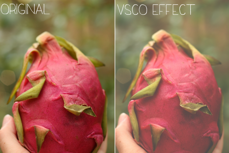 blog — elle: How To Do VSCOcam Effects in Photoshop