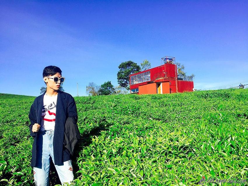 Top 10 Homestay Đà Lạt có vườn farm đẹp cho du khách trải nghiệm