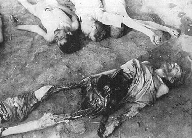 Image result for german army genocide in the Eastern front