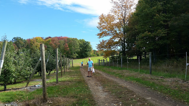 December Picture Post-A-Thon Continues:  Fall 2016 Apple Picking --How Did I Get Here? My Amazing Genealogy Journey