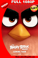 Angry Birds: La Película (2016) Latino Full HD BDRIP 1080P - 2016