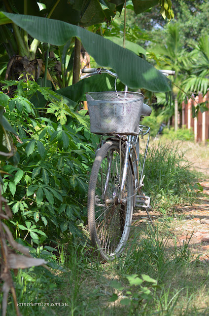 The bicycles of Vietnam