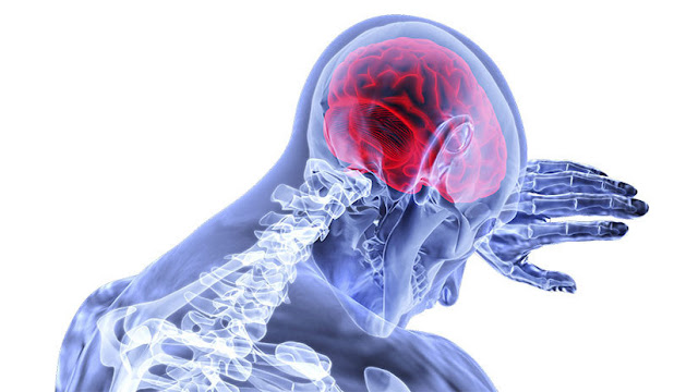 Descubren el segundo 'cerebro' humano, que se ubica al final del tracto gastrointestinal