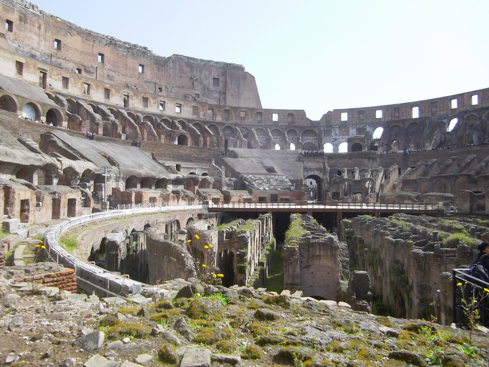 Visit Of The Colosseum, Rome, Italy