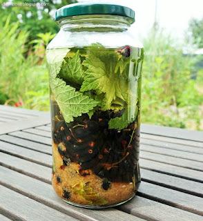 Mein Rezept für einen gesundheitlich wertvollen Fruchtlikör