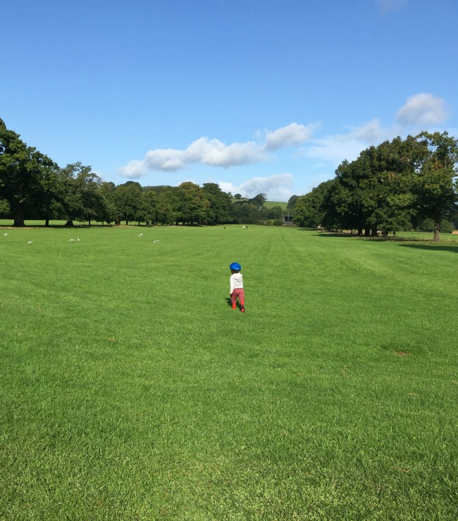 boy-walking-on-the-huge-grass-field-at-tredegar-country-park-with-views-into-the-distance