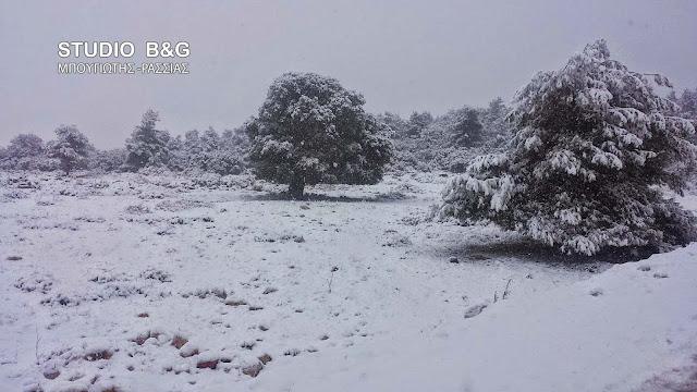 Εκτεταμένη χιονόπτωση στην ορεινή Αργολίδα