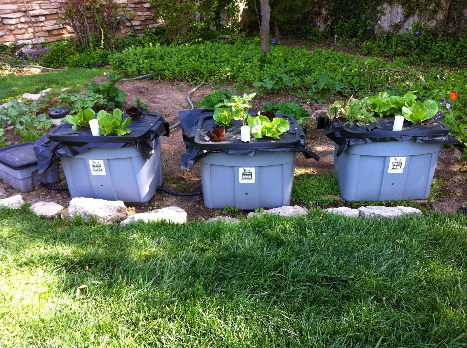 Garden Anywhere Box: Top Ten Reasons Why I Love Garden ...