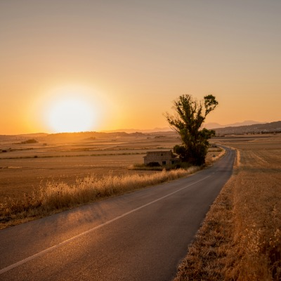 Sunrise over a country road, coming from the bottom right diagonally to mid right, but curving back towards the left.