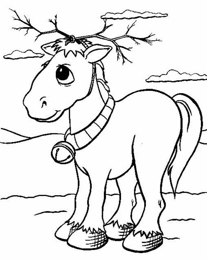 Sketsa Gambar Mewarnai Binatang Kangguru bahasapedia.com