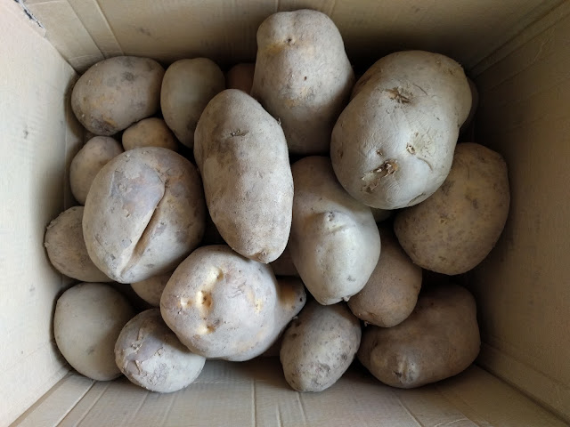 Patatas-gallegas-2