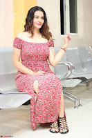 Diksha Panth in a Deep neck Short dress at Maya Mall pre release function ~ Celebrities Exclusive Galleries 066.JPG