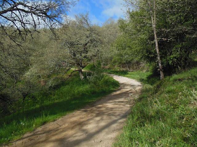 Montes de Oca, Camino, Jola Stępień