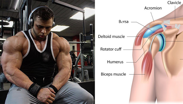 The Only 3 Exercises You Need To Do To Develop Monstrous Delts – GYM ...