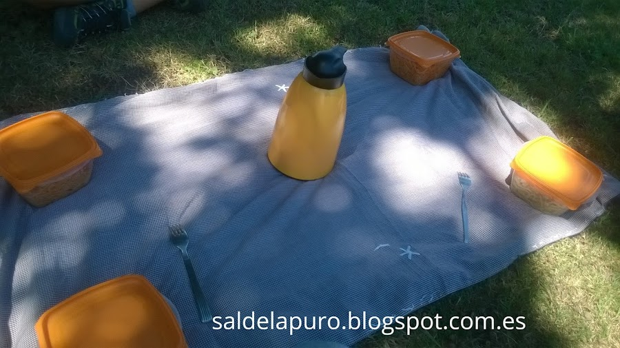 trucos-preparar-picnic