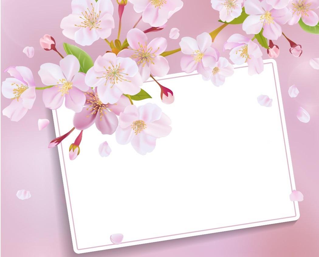 أجمل صور خلفيات ورود و زهور للكتابة عليها 2021
