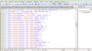 Text Editor Programmer