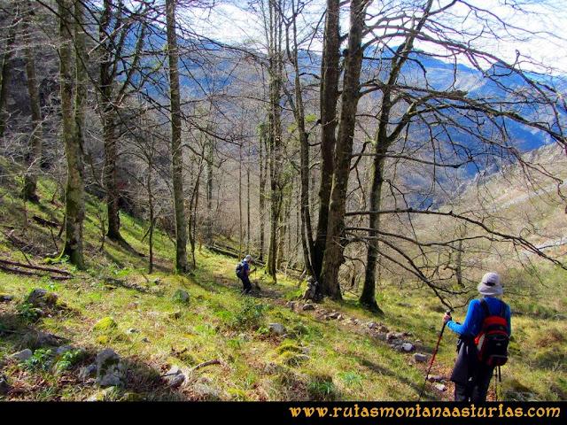 Ruta Pico Vízcares: Entrando en el bosque de camino a la majada Degoes