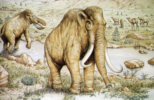 Animal Pré-Histórico, Características dos Animais Pré-Históricos