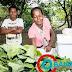 Dia da Mulher Trabalhadora Rural é celebrado com avanços