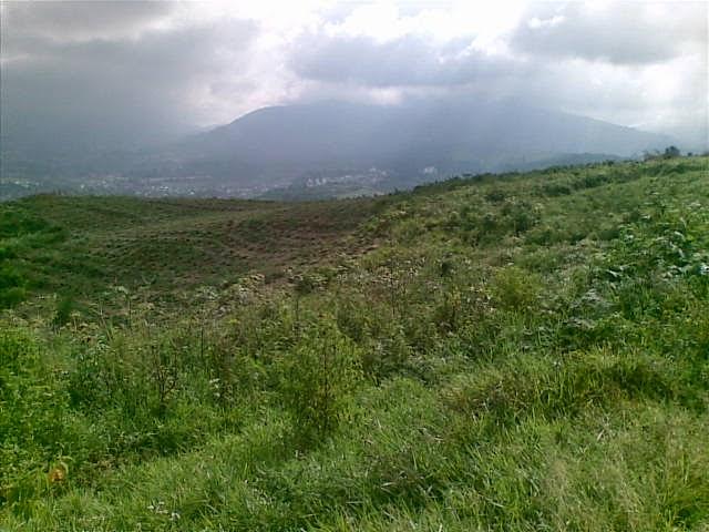 Foto(5383) Di Jual Tanah Murah 96 Ha Lokasi Kawasan Puncak Jual tanah di cipanas jual tanah di puncak