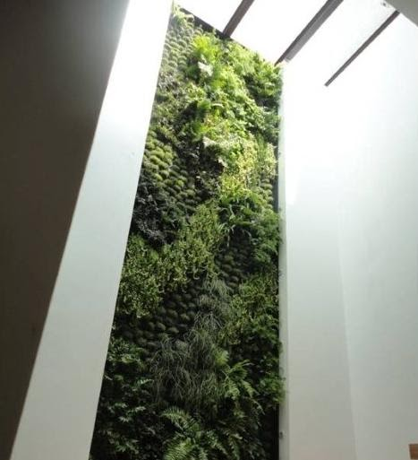 Casa Verde Apartments: Casa Haus English: Green Roofs And Vertical Gardens