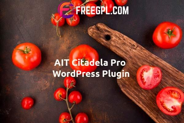 AIT Citadela Pro WordPress Plugin Nulled Download Free