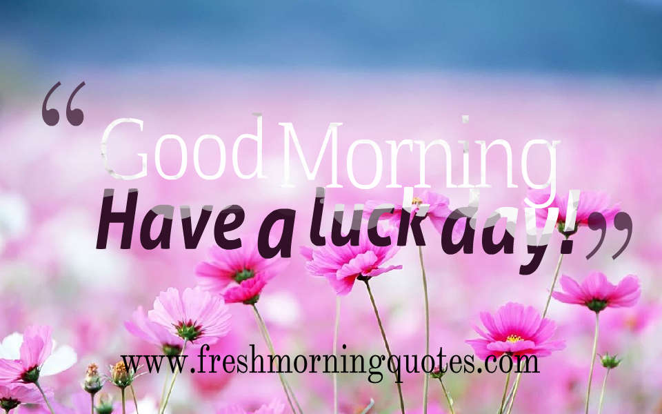 good morning have a lucky day