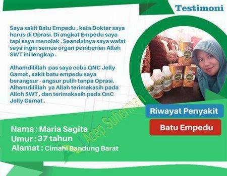 Qnc Jelly Gamat (Penyakit Luar dan Dalam)