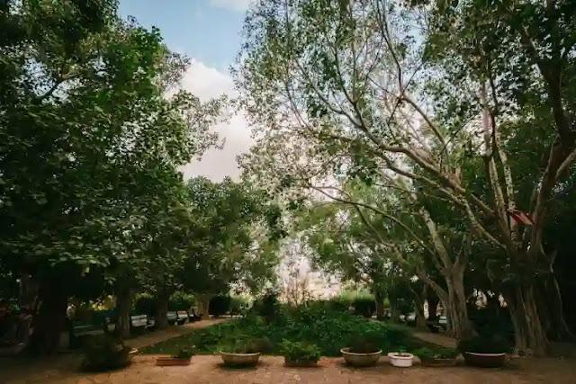 متنزه السيوفي في بيروت